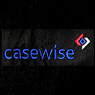 embroidery-casewise