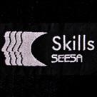 embroidery-seesa-skills